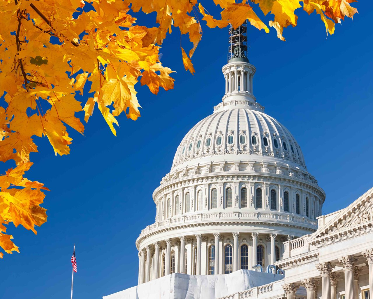 US Capitol in the Fall 2016